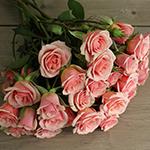 Ilse pale pink Rose Bunch