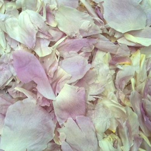 Blush Dried Peony Flower Petals