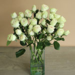 Irishka Cream Wholesale Roses In a vase