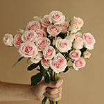 Irishka Pink Wholesale Rose Bunch in a hand