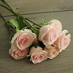Irishka Pink Rose Bunch