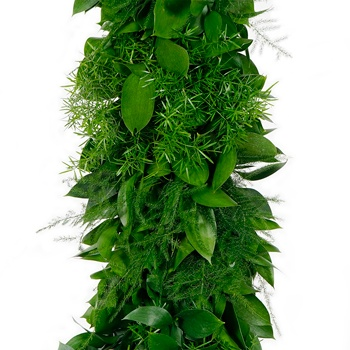Ruscus, Plumosa, and Sprengeri Greens Garland