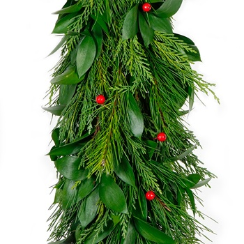 Israeli Ruscus, White Pine, Leyland Cedar, Red Faux Berries Garland