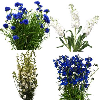 June Wedding Flower Pack