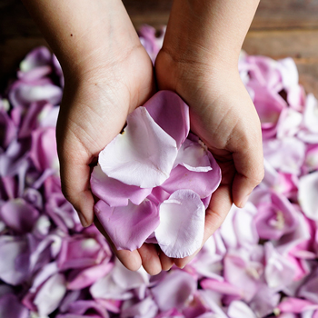 Lavender Rose Petals Wholesale