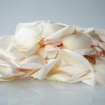 Buy Dried Pink Garden Rose Petals
