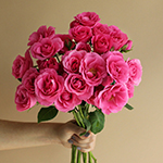Lovely Lydia Dark Pink Wholesale Rose Bunch in a hand