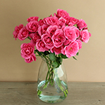 Lovely Lydia Dark Pink Wholesale Roses In a vase