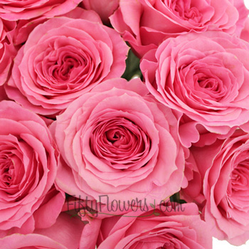 Martina Princess Pink Rose