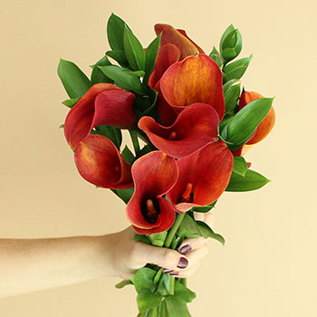 Mango Mini Callas Centerpieces
