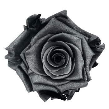 Preserved Metalized Deep Silver Rose