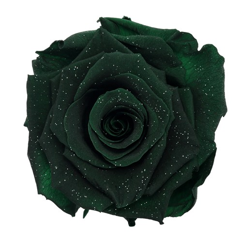 Preserved Metalized Olive Green Rose