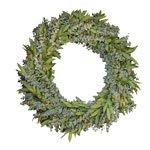 Wreath Packs Baby Eucalyptus