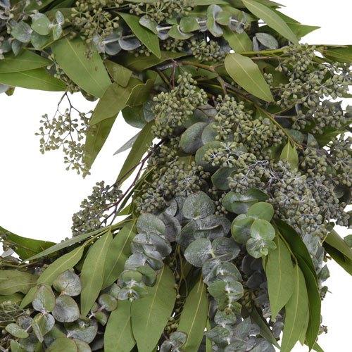 Mixed Eucalyptus and Bay Leaf Wreath