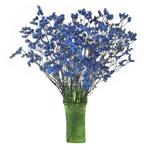 Blue Limonium Filler Flower