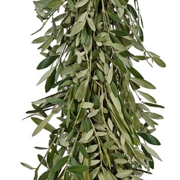 Olive Greens Garland