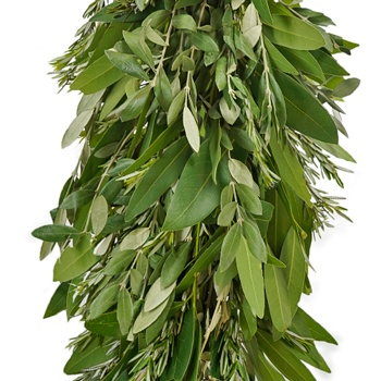 Olive, Rosemary and Bay Leaf  Garland