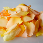 Buy Bulk Peach Rose Petals