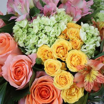 Peach Rose, Hydrangea & Alstroemeria Bouquet | FiftyFlowers