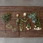 Peach Wholesale Flower Centerpieces