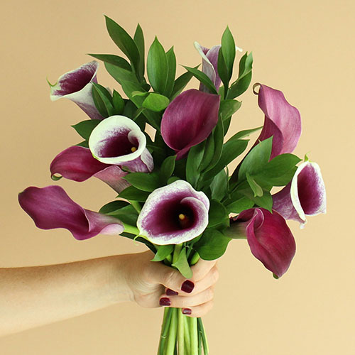 Purple and Cream Mini Callas Centerpieces