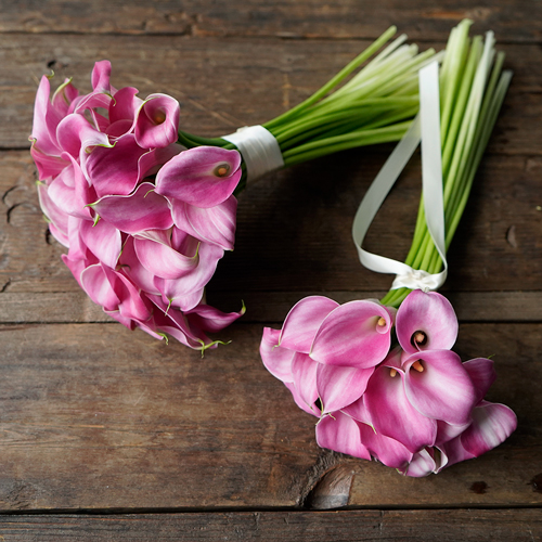 Pink Mini Calla Bouquet