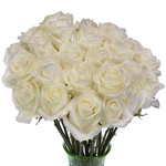 Polar Star White Roses Wholesale Flower In a vase