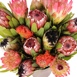 Tropical Protea Wedding Flowers