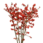 Wholesale greenery red ilex berry branch filler flowers sold as bulk