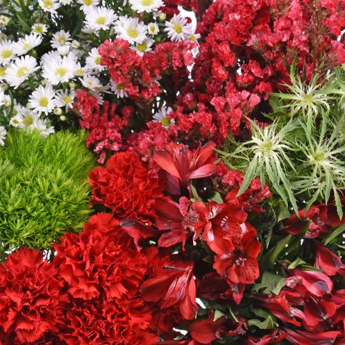 Red Textured Filler Flower Pack