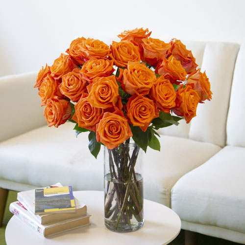 Fresh European Cut Orange Roses For Your House