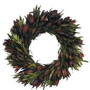 Safari Wreath Packages