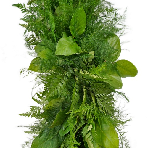 Salal, Plumosa and Leather Leaf Greens Garland