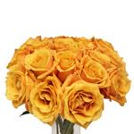 Orange Rose Sari