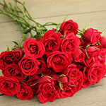 bulk red spray roses