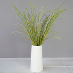 Bulk greenery fresh cut shaker grass filler flowers designed