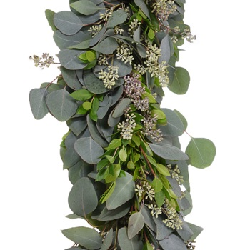 Silver Dollar Seeded Eucalyptus and Myrtle Garland