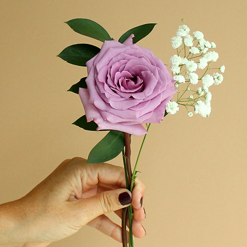 Mother's day purple rose bouquet wholesale flowers