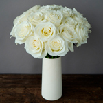 Snow Bill Roses buy Wholesale