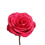 Wholesale Rose Solitaire Raspberry Pink