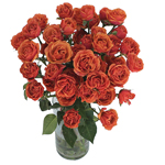 bulk orange spray roses