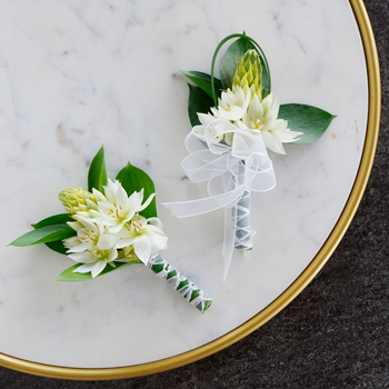 Star of Bethlehem Boutonniere and Corsage Pack