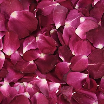 Red Dried Rose Petals