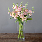 Peach Stock Wholesale Flower In a vase