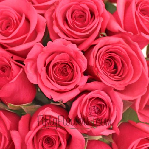 Pink Tenga Venga Sweetheart Rose