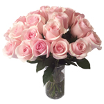 Titanic Light Pink Rose Wholesale Roses In a vase