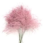Wholesale greenery pink tree fern filler flowers sold as bulk