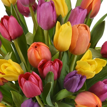 Save the California Tulip Bouquet