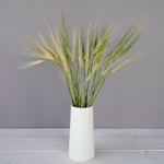 Bunch of stems fresh wheat greens filler flower designed