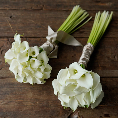 White Mini Calla Bouquet